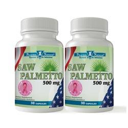 58630 Saw Palmetto